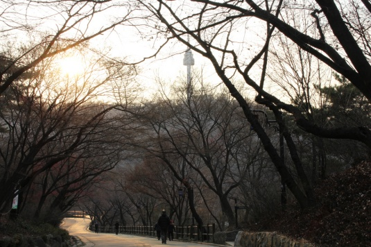 Namsan in winter