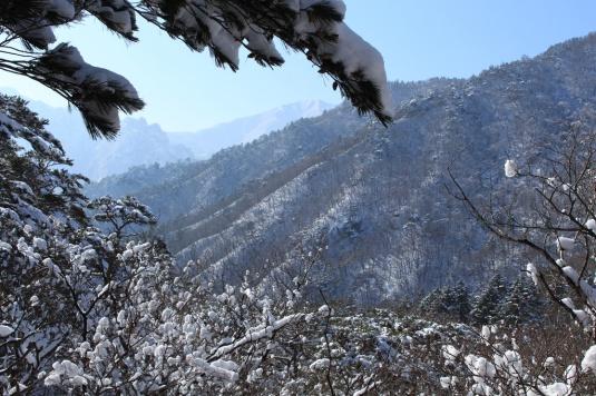 Snowy day in Seoraksan