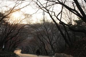 N Seoul Tower in Namsan park