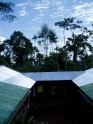 The Amazon from Arajuno house