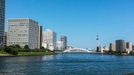 Sumida river looking north