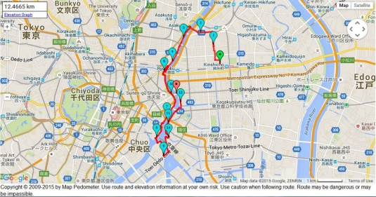 Run day Monday: Sumida river | The Parrot on the Power lines