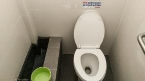 Bucket flusher