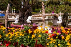 Da Lat Flower Park