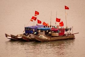 Cat Ba fishing boats