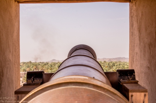 Fort view over Nizwa