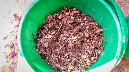 broken down compost in bin 1